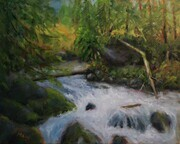 Rushing Waters (Oil on Canvas 16 x 20)