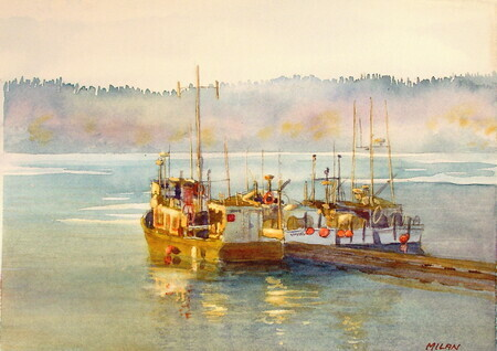 Morning at Shearwater-Sold